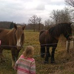 girls_see_horses