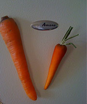 carrot_magnets