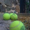 tennis_balls_country_house